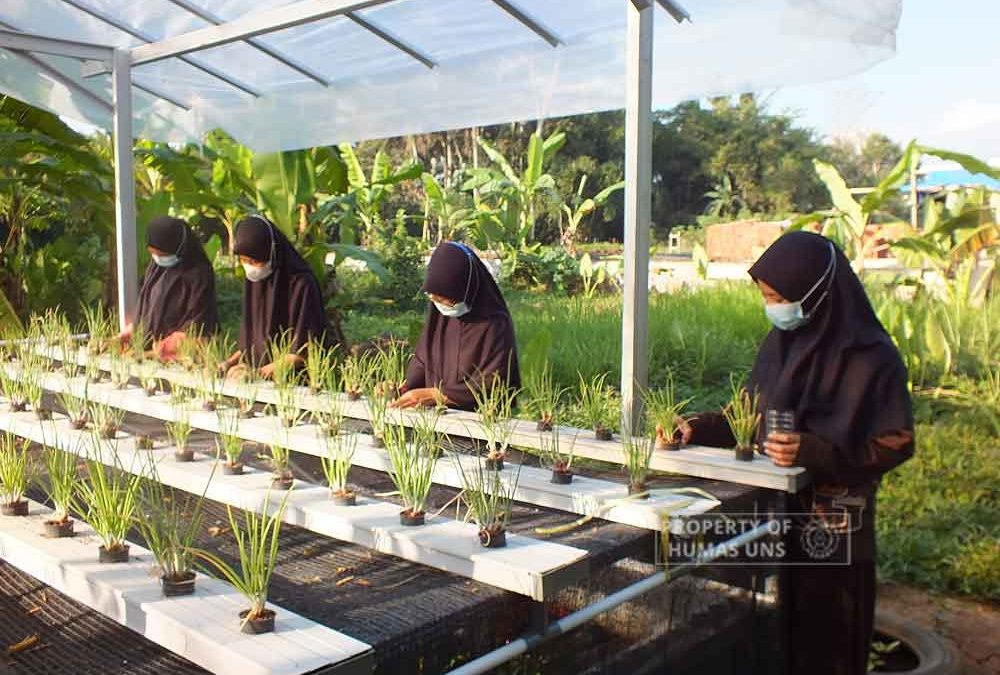 Improving Food Security, PKM-PM UNS Team Promote Urban Farming in Panti Danukusumo, Purworejo